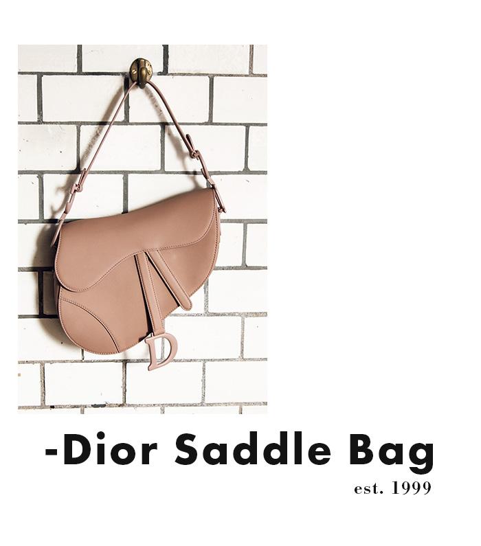 Dior Saddle Bag - Tasche mit Kultstatus (gebraucht)